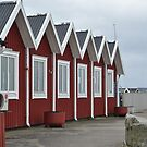 Fishing Houses in Sweden  by Shelby  Stalnaker Bortone
