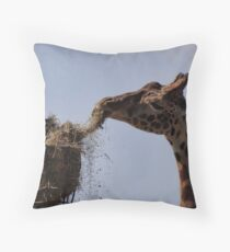 What's for dessert? Throw Pillow