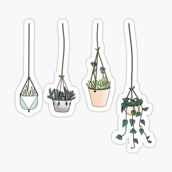 Hanging Plant Aesthetic  Sticker