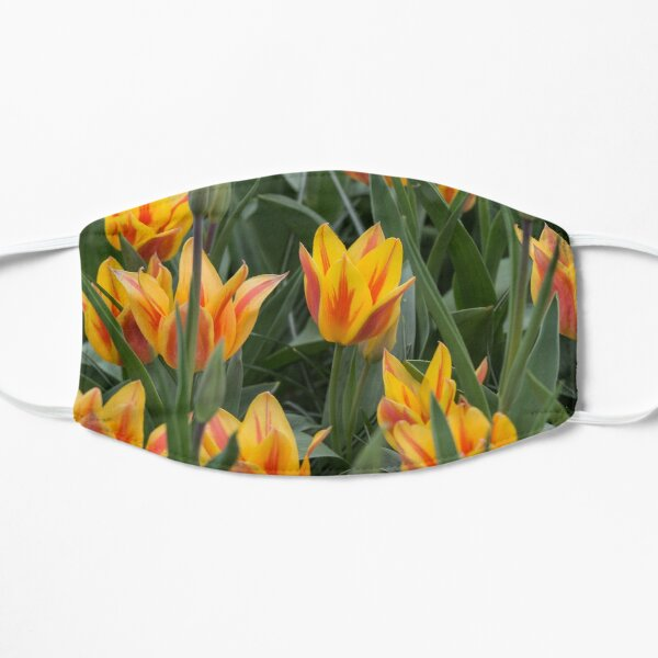 Yellow and red Fire Tulips Mask