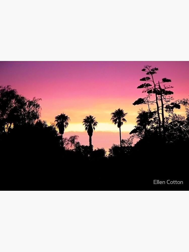 Backyard Sunset by ellcot