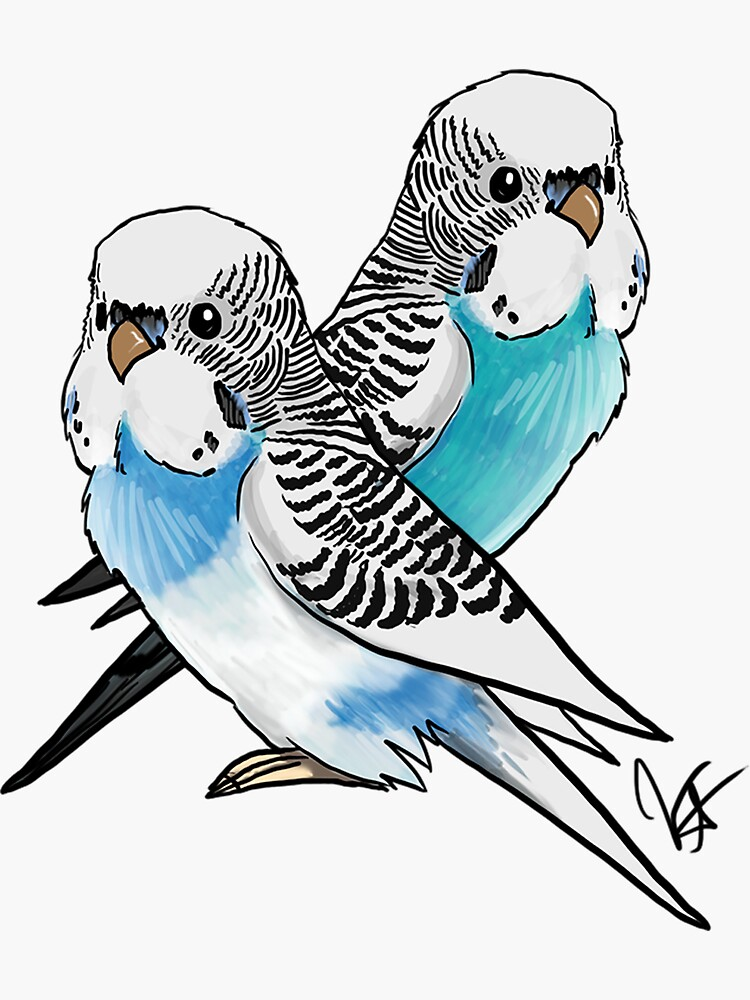 Two Budgies by jameson9101322