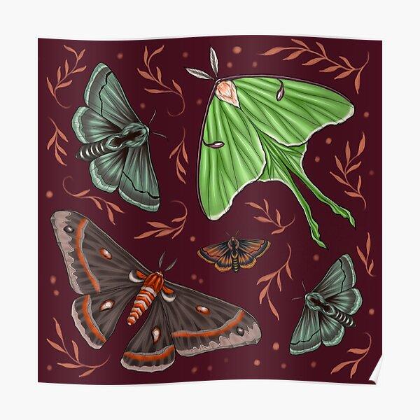 Fairytale Moths Poster