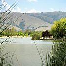 Lake Elizabeth 2 by Ellen Cotton