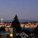 West Seattle rooftop by Tori Snow