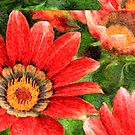 Vivid Orange African Daisy Digital Oil Painting by Beverly Claire Kaiya
