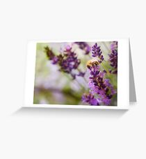 Bee on the Lavender Greeting Card