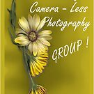 CAMERA - LESS PHOTOGRAPHY MEMBER BANNER by Magriet Meintjes