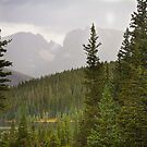 Scenic View of the Indian Peaks by Bo Insogna