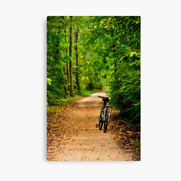 The Bike on the Towpath Canvas Print