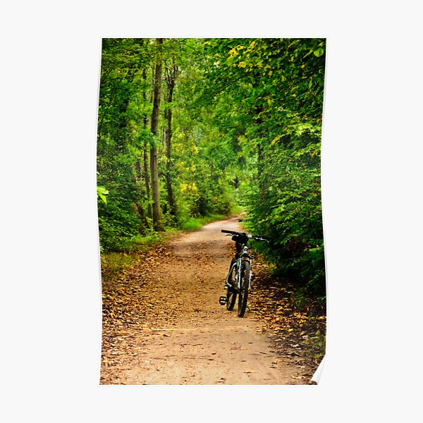 The Bike on the Towpath Poster