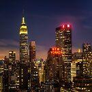 New York, New York by Yelena Rozov