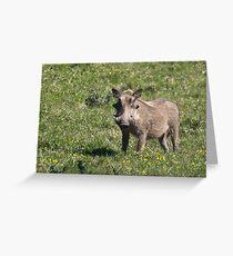 Warthog Grußkarte
