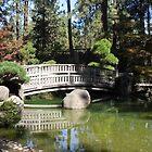 Nishinomiya Japanese Garden..... by DonnaMoore