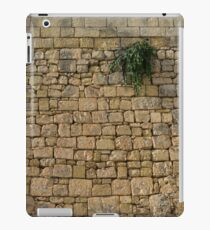 Life on Bare Rock - Up High on the Fortification Wall iPad Case/Skin