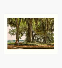 Tranquility at Bok Tower Gardens Art Print