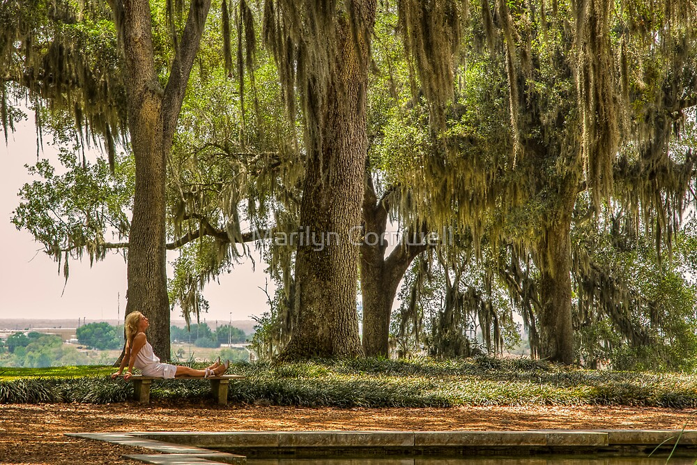 Tranquility at Bok Tower Gardens by Marilyn Cornwell