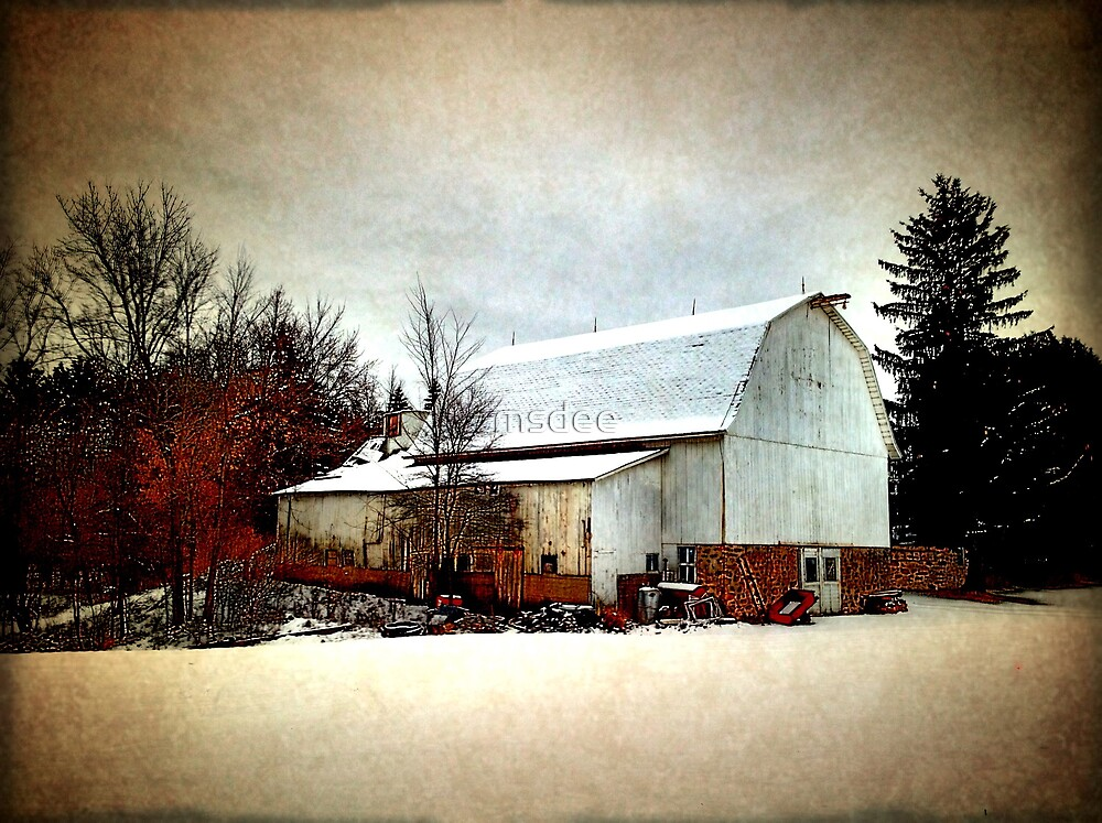 Country Barn by msdee
