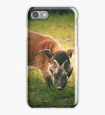 The Warthog (Lomography) iPhone Case/Skin