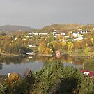 Fall view from my window by Annbjørg  Næss