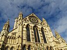 York Minster by Carol Bleasdale