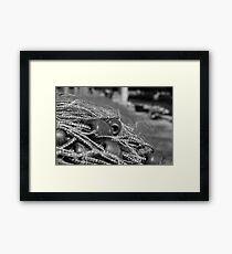 Net for fishing Framed Print