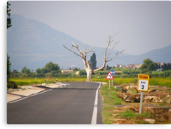 Kilometer 2 by João Figueiredo