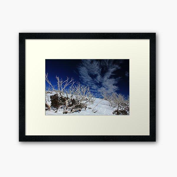 Mt Hotham trees Framed Art Print