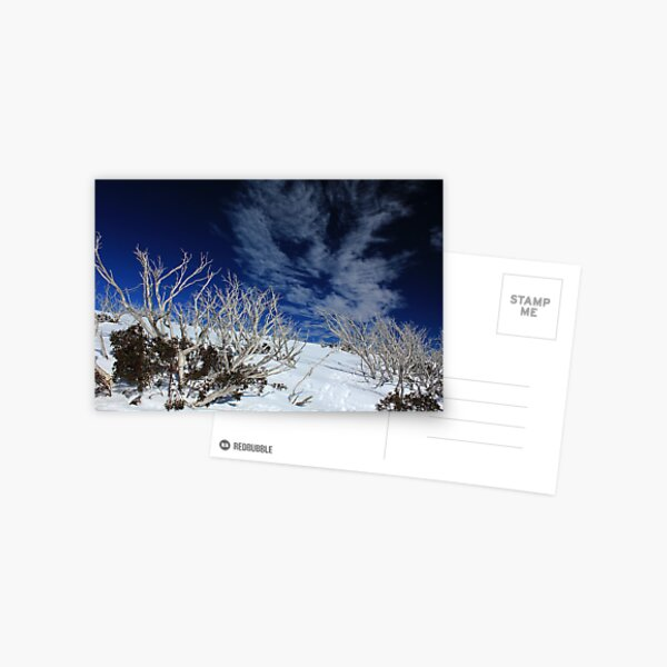 Mt Hotham trees Postcard