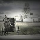 The Amish of Lancaster County by Dyle Warren
