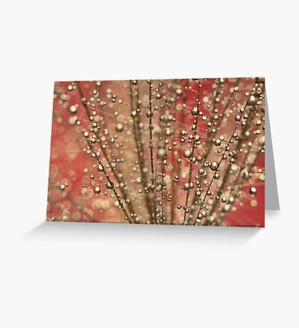 Fairy Pink Greeting Card