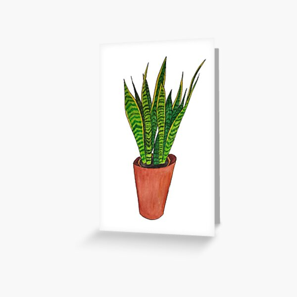 Snake plant watercolour Greeting Card