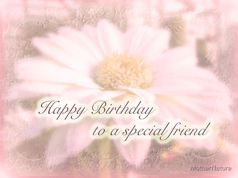 Birthday Special Friend Greeting Card White Gerbera Daisy – Happy Birthday Cards for a Special Friend