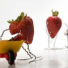 Where Strawberry Jam Comes From by Ian Thomas