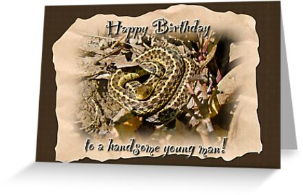 Boy Birthday Greeting Card Baby Garter Snake Greeting Cards by – Boy Birthday Cards