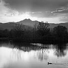 Calm Peaceful Evening Sky BW by Bo Insogna