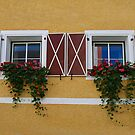 Two Lovely Windows. by Lee d'Entremont