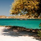 DELFINI BEACH ... PAROS by vaggypar