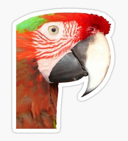 A Beautiful Bird Harlequin Macaw Portrait Sticker