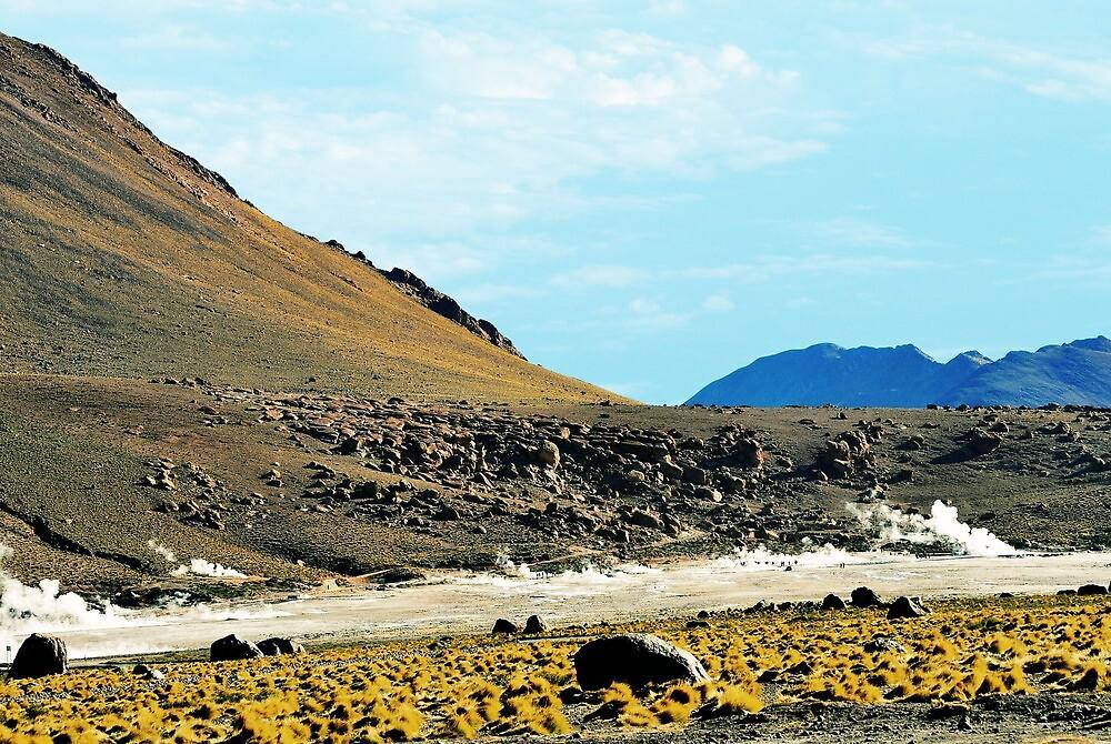 Paisaje en el Altiplano................. by cieloverde