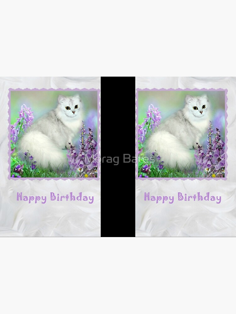 Mistletoe The Silver Shaded Chinchilla Persian Cat Birthday Card by MoragBates