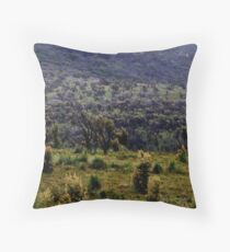 after the fire surreal landscape Throw Pillow