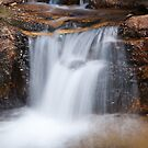 Waterfall along Fall River Road - Rocky Mountain National Park by Teresa Smith