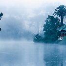 Early morning Fog at Stow Lake by JagiShahani