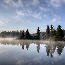 Mornings Mist by Pam Hogg