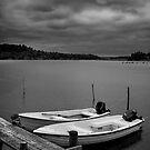 Fishing Boats by Ryan Carter