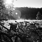 Bicycles by Ryan Carter