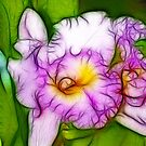 FRACTAL ORCHID by PALLABI ROY