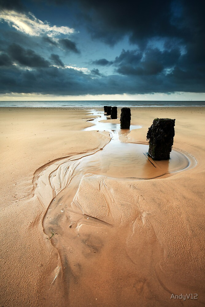 Reach for the Sea by Andy Freer