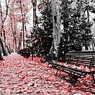 Red Bench by luciaferrer